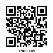 12085CH09